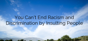 You Can't End Racism and Discrimination by Insulting People
